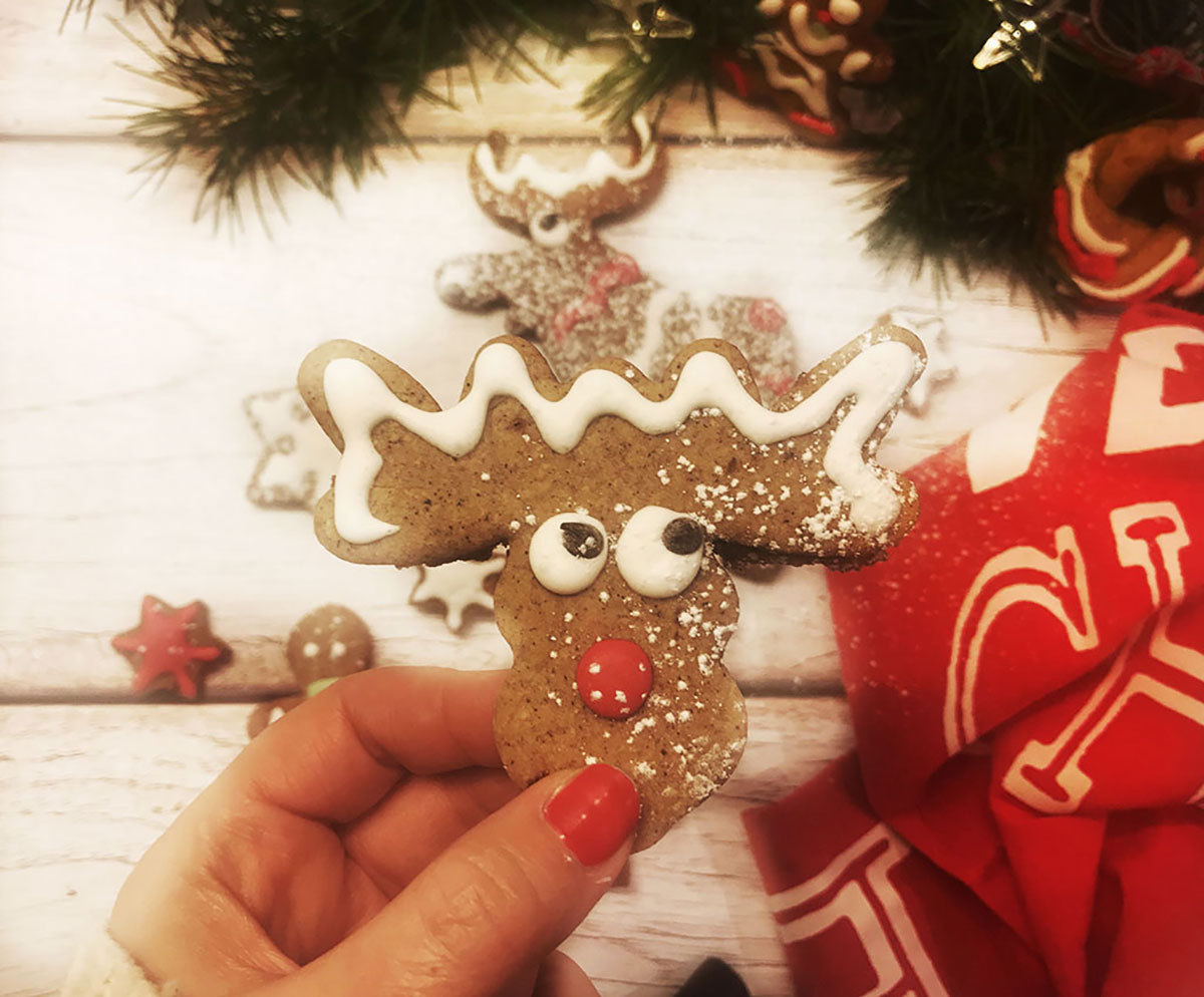 biscotti di Natale pan di zenzero con glassa decorata