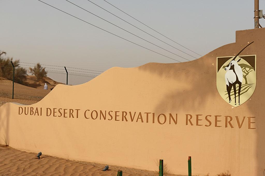 ingresso della desert conservation reserve